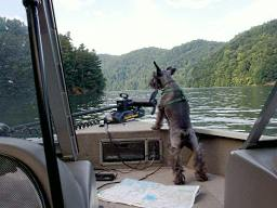 Gretchen, our navigator